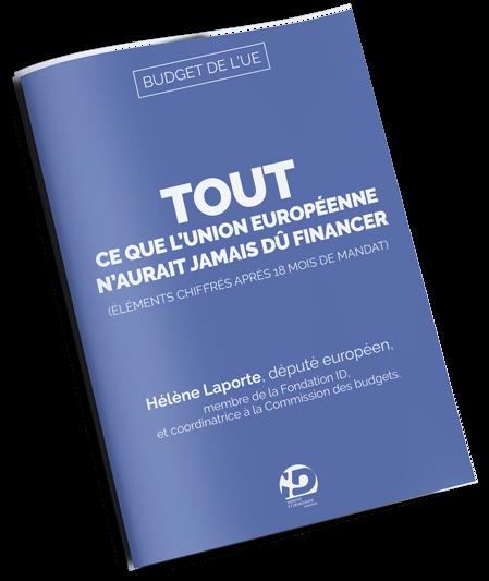 budget-EU---449x535
